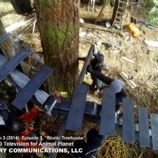 AE - Treehouse Masters 2014